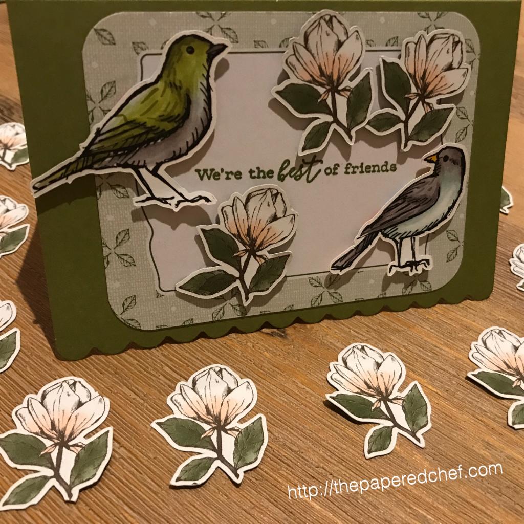 Magnolia Lane dsp and Bird Ballad dsp
