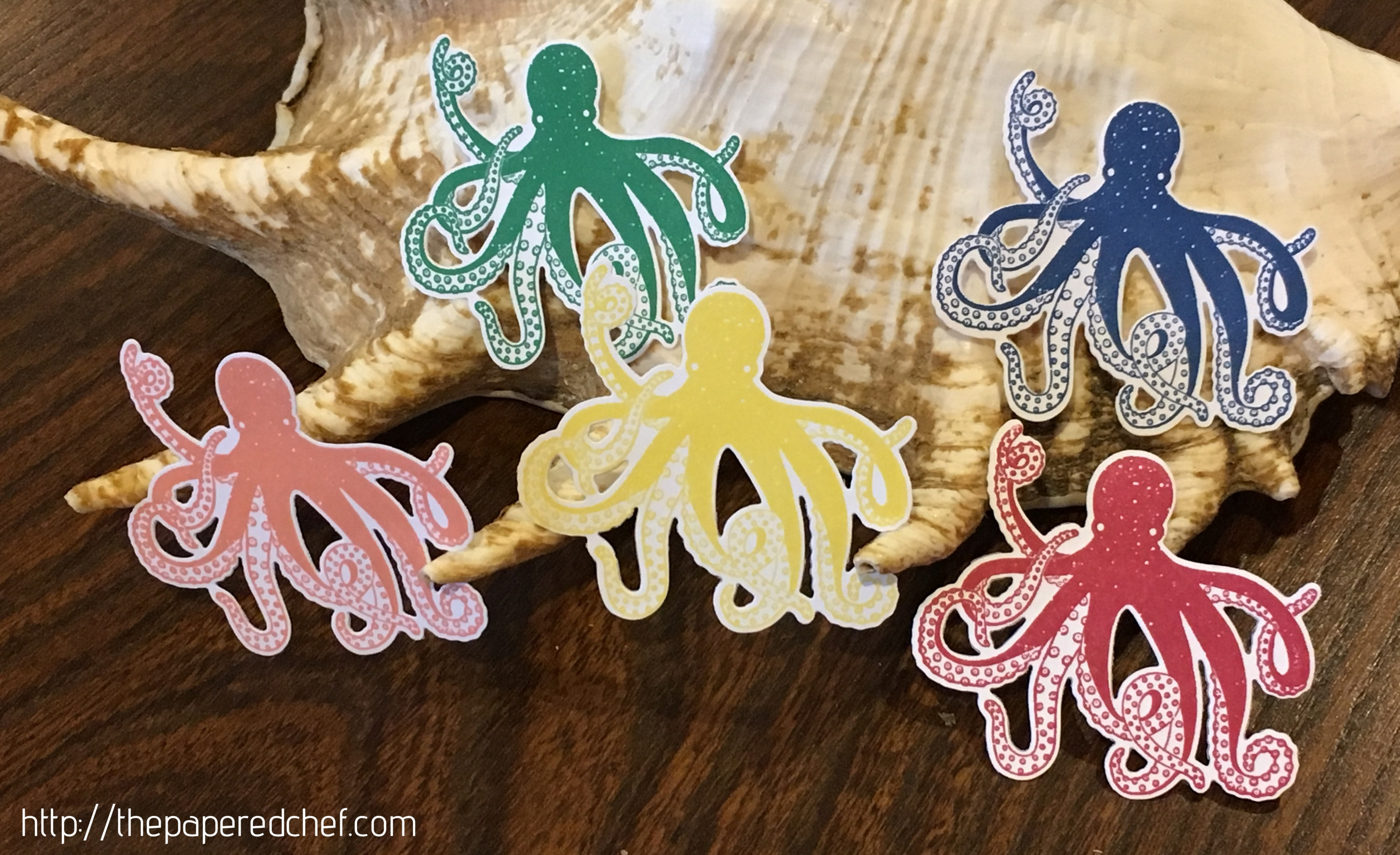In Color Octopuses