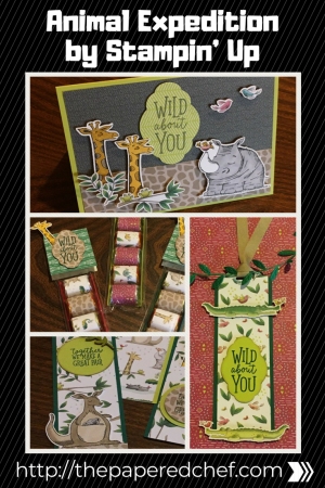Animal Expedition by Stampin' Up