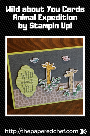 Wild about You Cards - Animal Expedition