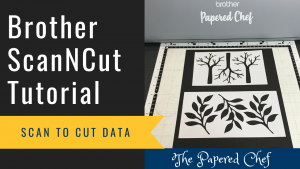 ScanNCut Tutorial - Scan to Cut Data