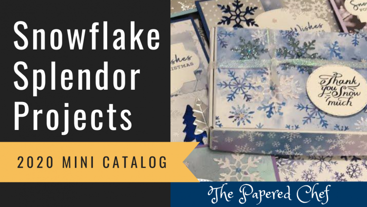 Snowflake Splendor Projects